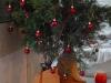 Baum in Vollansicht