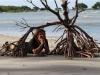 Flo und Mangrove