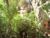 Tinka in der Windjana Gorge