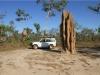Kleiner Bruce, großer Termit mound