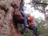 Tinka hat die Baumnase erklommen